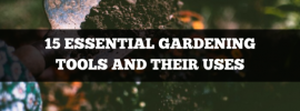 15 essential gardening tools and their uses